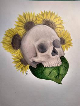 Sunflower Skull