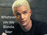 Blondie Bear by juggalette223