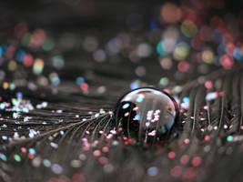 'Confetti' by LiaCam