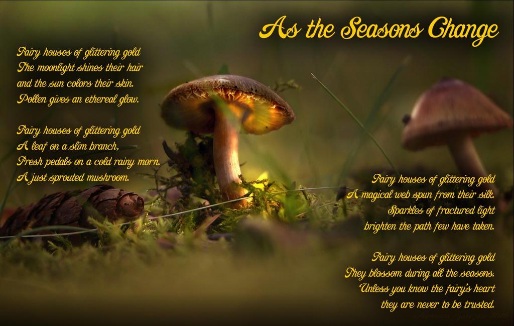 As the Seasons Change by LiaCam