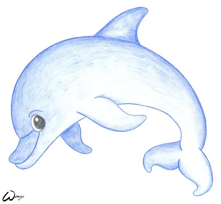 How to draw baby dolphin