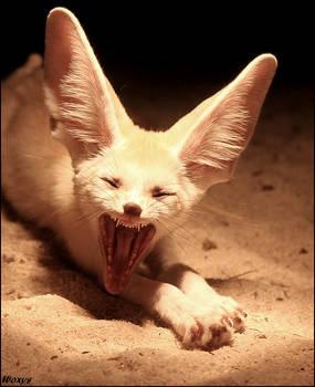 Most terrific creature EVER???