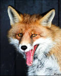 Fox wants to eat your brain