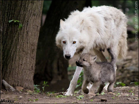 I trust you, mommy...