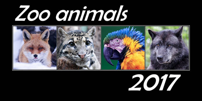 Calendar Zoo Animals 2017