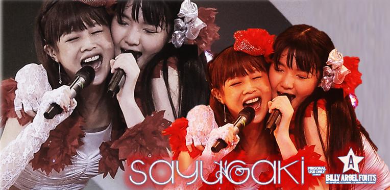 Michishige Sayumi and Niigaki Risa Banner by FerdinandFranz