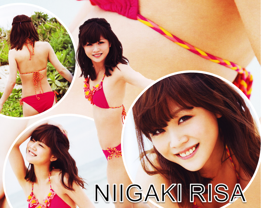 Niigaki Risa Banner 2 by FerdinandFranz