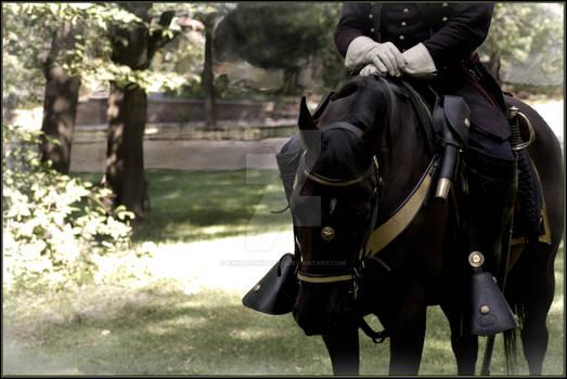 Cavalry Soldier