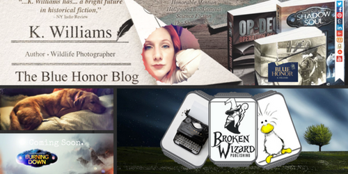 Tumbler Header - Blue Honor Blog