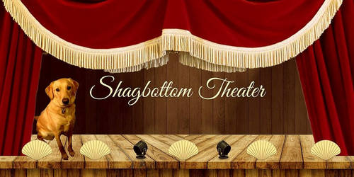 Shagbottom Theater Header