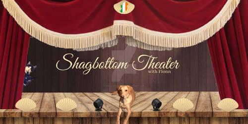 2019 Shagbottom Theater Header
