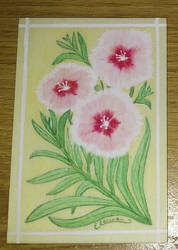 china pink by Elaienar