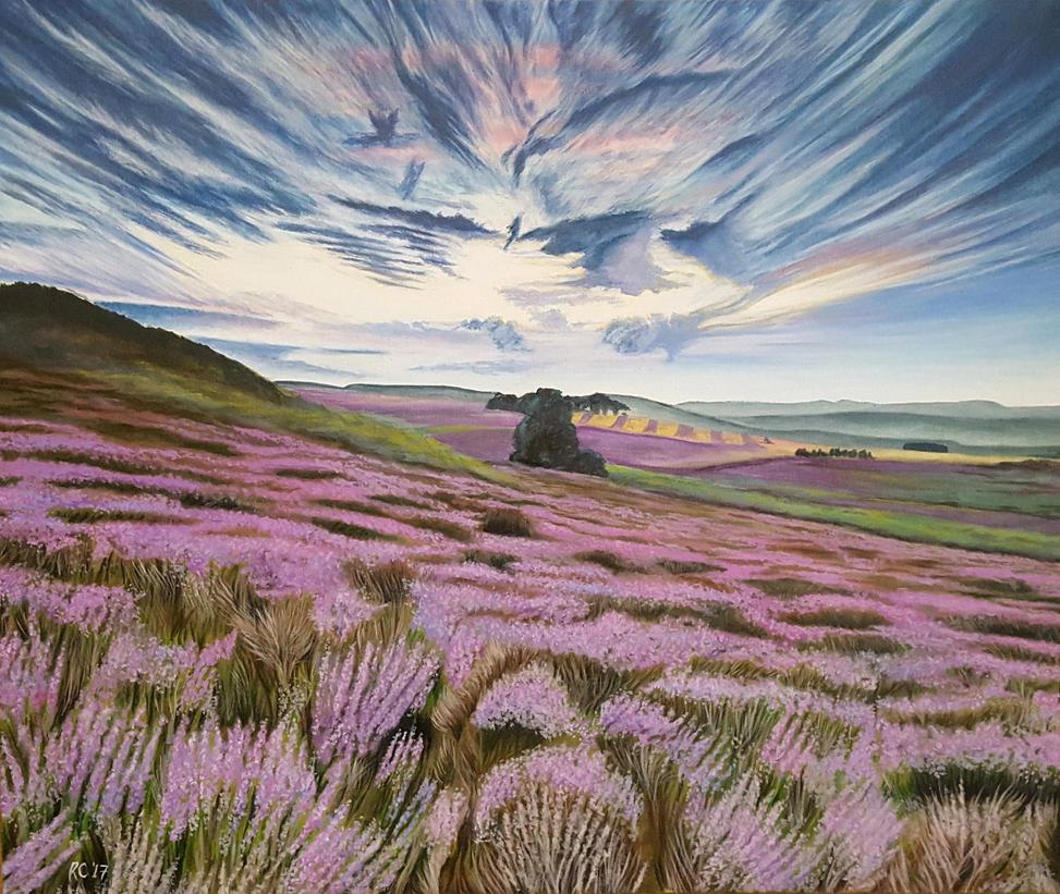 Heather fields by rvc89