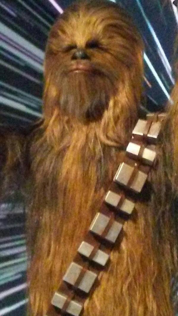 star wars costume 4 Chewie by TheWalrusclown