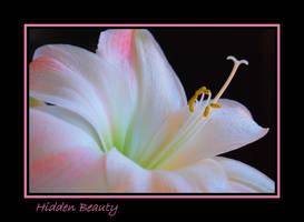 Hidden Beauty... by LadyAliceofOz