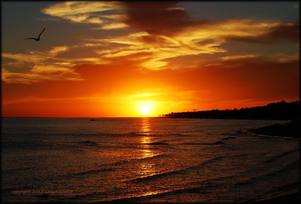Dauphin Island 10-21-12 by LadyAliceofOz