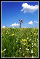 giraffe by lea-kim
