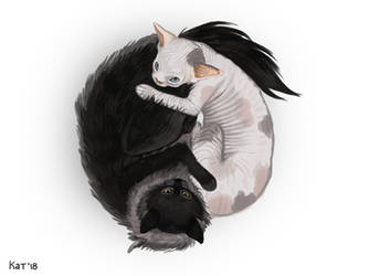 Yin and Yang by k2-kun