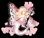 Mermaid Butterfly OTA (CLOSED)