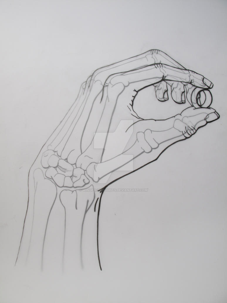 Skeletal Hand Holding Ring - Skin Overlay By Winged-Thoughts On DeviantArt