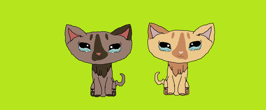 how to draw a lps cat