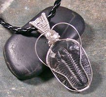 Wire-Wrapped Trilobite Pendant by HeatherJordanJewelry