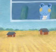 Paintstroke fields