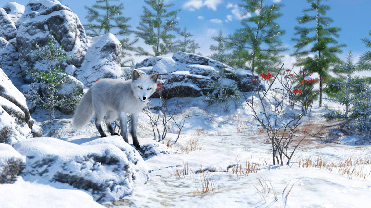 In winter forest