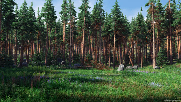 Forest Glade (img 2)