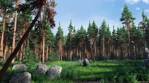 Forest Glade (img 1)