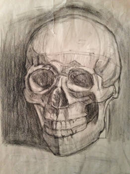 Skull  drawing for month one.
