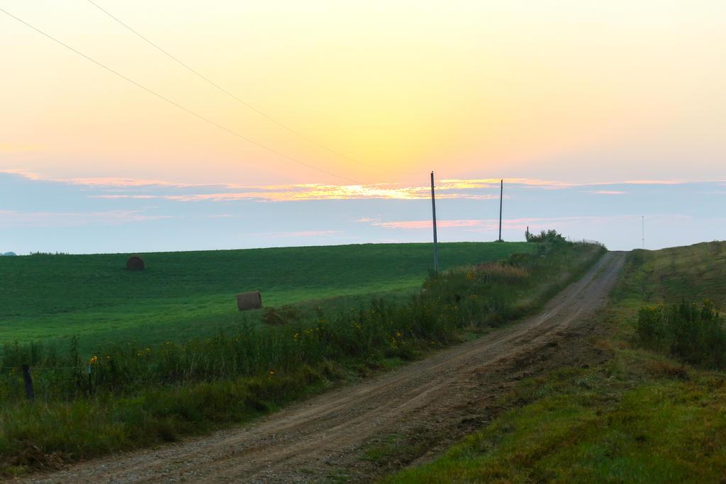 Country Roads 2 by zamfir