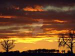christmas sunset II