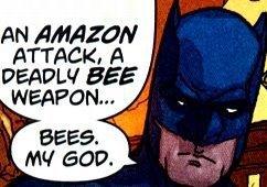 Batman...Bees....MY GOD. by akari-61