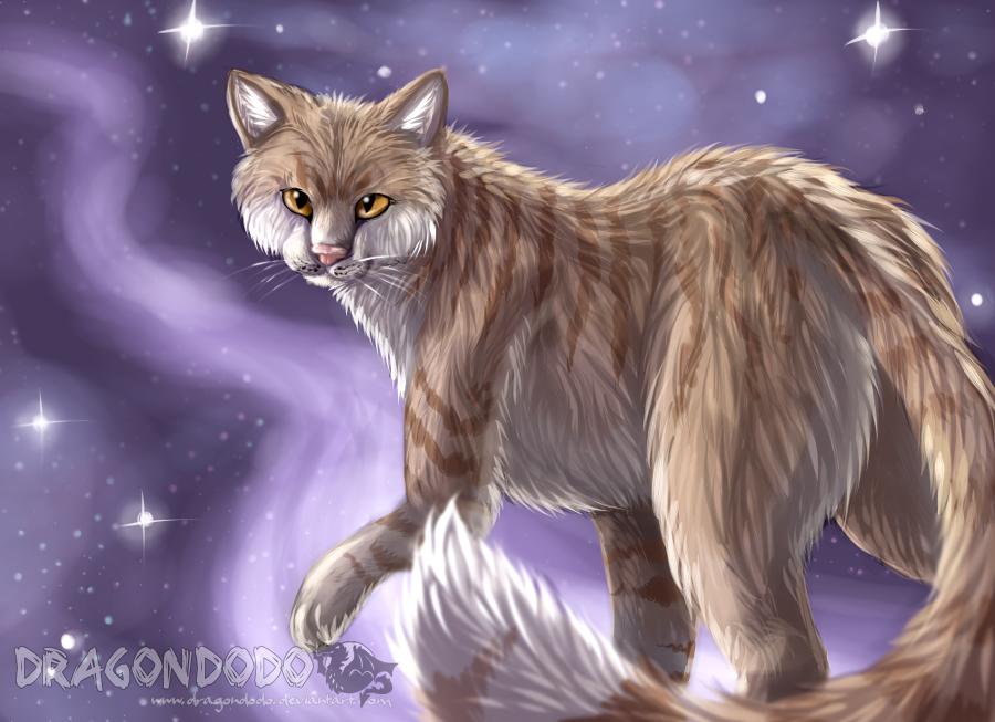 :GA: May Starclan light your path by DragonDodo