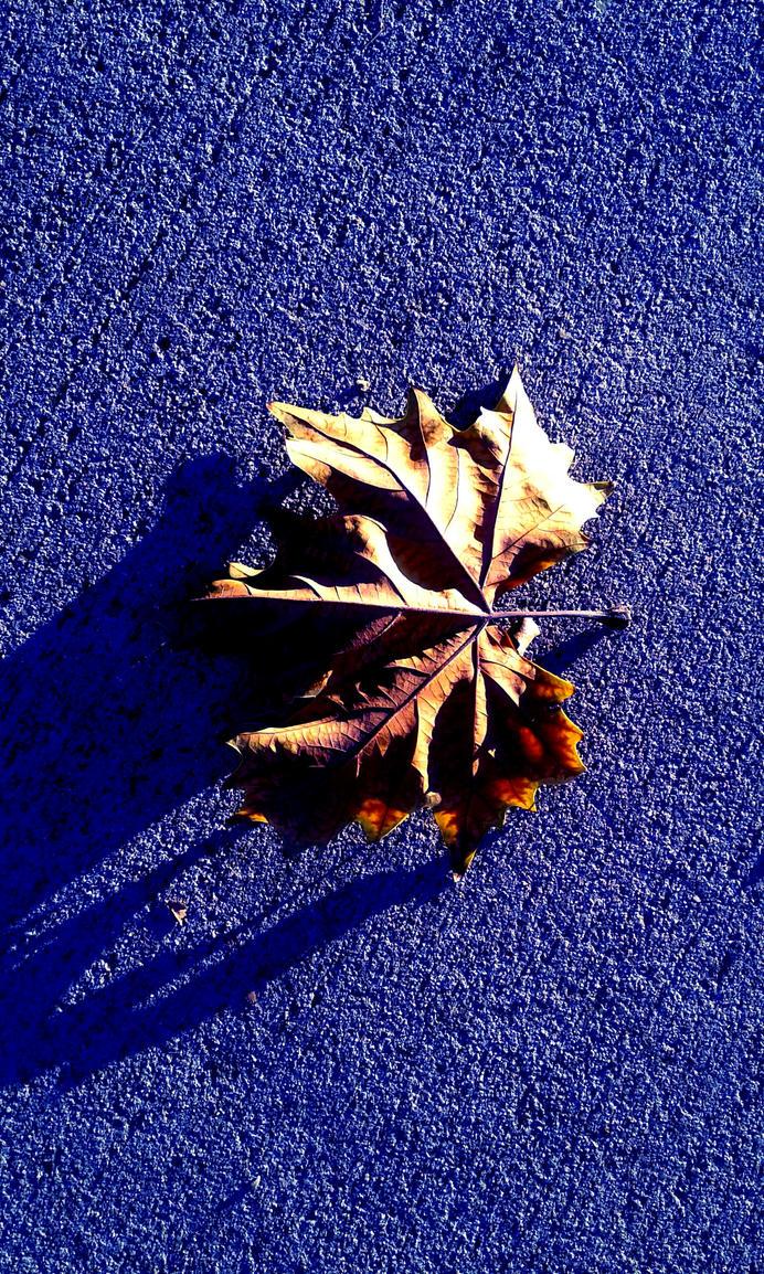 The Last Leaf by DeusExStigmachina