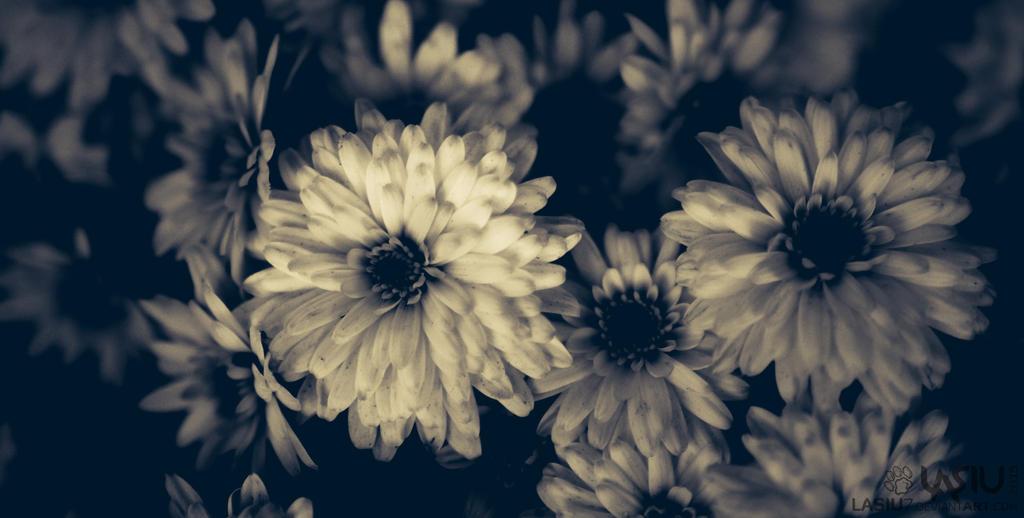 Autumn #9 by Lasiu7