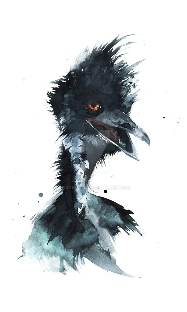 Feeling Emu by catgraff