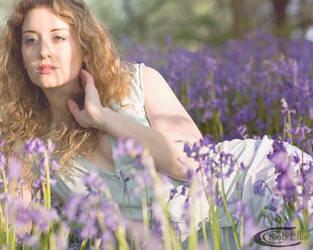 Spring dreams 2