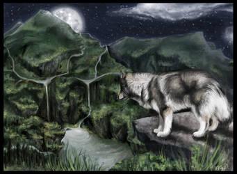 Gray Wolf by relashio