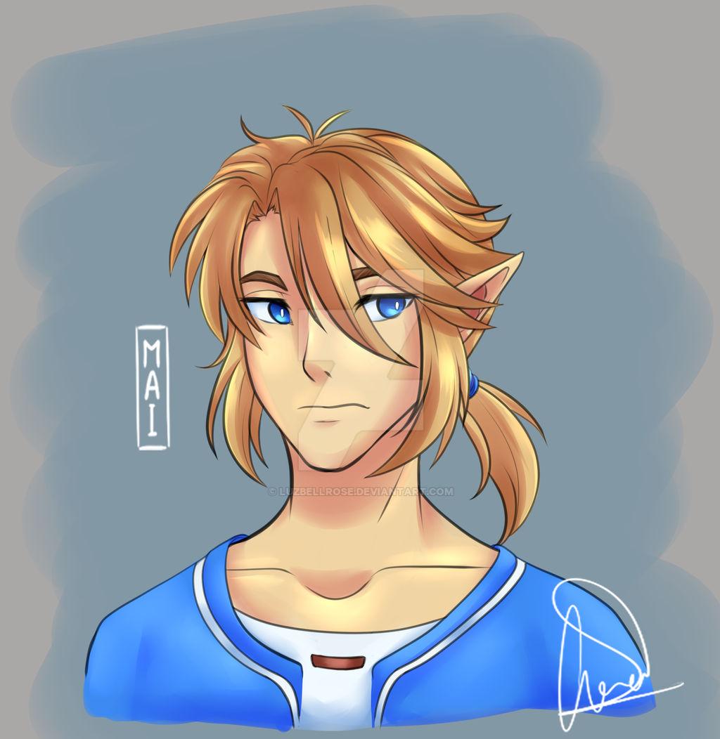 Link (the leyend of zelda) fanart