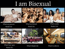 What I really do Meme: Bisexual