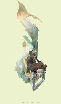 Fish(4)