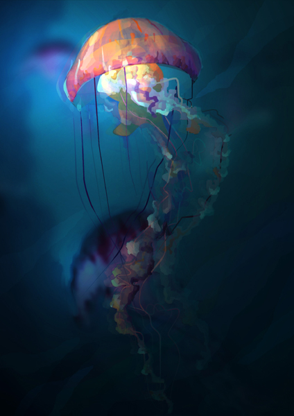jellyfish by gduch