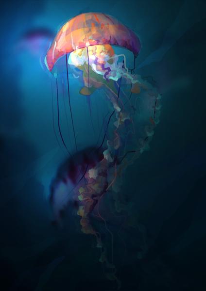 jellyfish by gduch