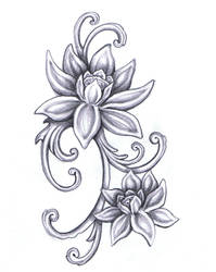 Viola's Lotus flower