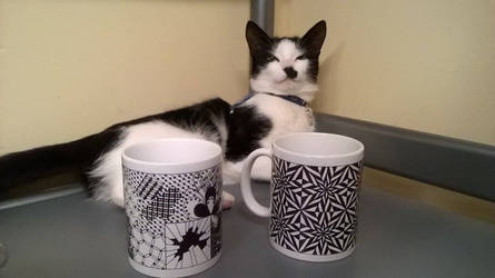 My lovely cat with mugs with my projects on it. by ALAZendoodle
