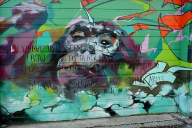 Streetart 612b by dorenna