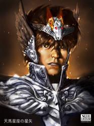 Pegasus Seiya by flavioluccisano