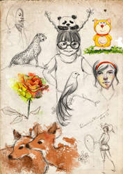 Sketchbook 123